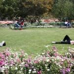 City Season - Spring Delights, Around Town