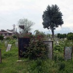 Kashmir Diary - Martyr's Graveyard, Srinagar