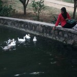 City Hangout – Wild Life, Lodhi Gardens