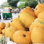 City Food – Mango Season, Around Town