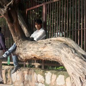 Atget's Corner – 491-495, Delhi Photos
