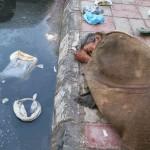 City Life – The Descent of Men, Turkman Gate