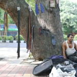 City Nature - Bachchan Dev Ram's Neem Tree, Lodhi Road