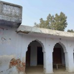 City Travel - Puraini Village, 100 Miles from Delhi