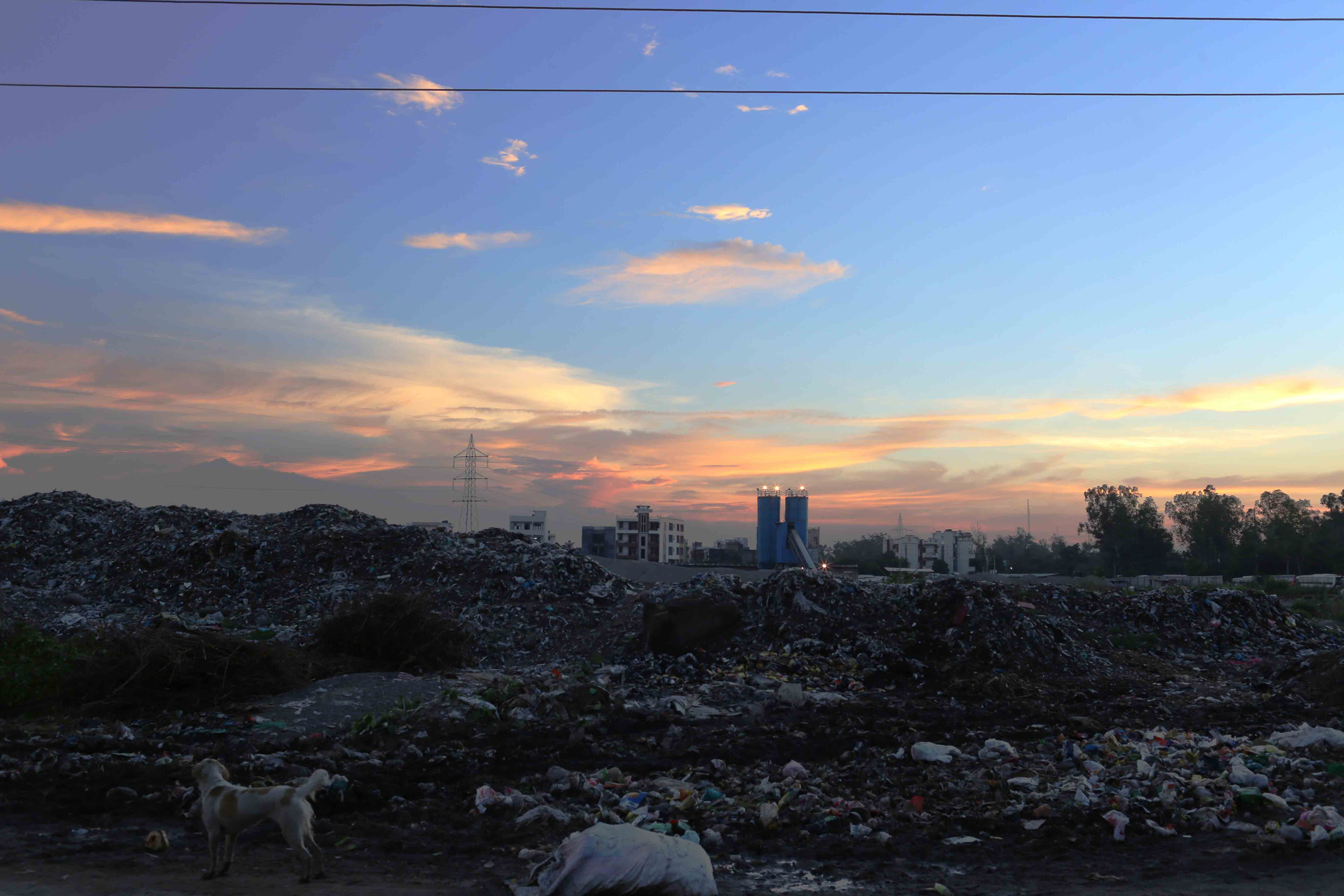 City Nature - The Dream Sky of a Nightmare City, Mainly East Delhi
