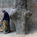 Atget's Corner – 991-995, Delhi Photos