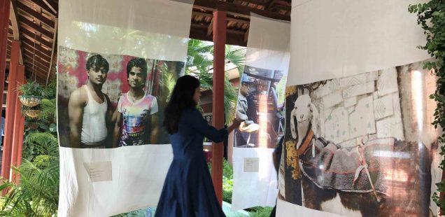 Photo Essay – 'Somewhere in Delhi' Exhibition, Goa Arts & Literature Festival