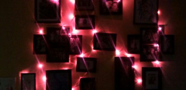 Our Self-Written Obituaries – Vindhya Vatsyayan, Mehrauli