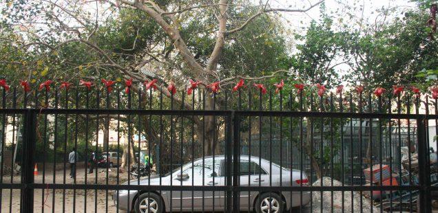 City Moment – Semal Flowers, Jeevan Prakash Building