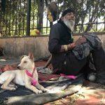 City Life - Two Vagabonds, Mathura Road