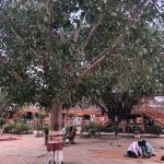 City Hangout - The Sheetla Mata Temple Grounds, Old Gurgaon