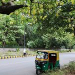 City Walk - Amrita Shergil Marg, Central Delhi