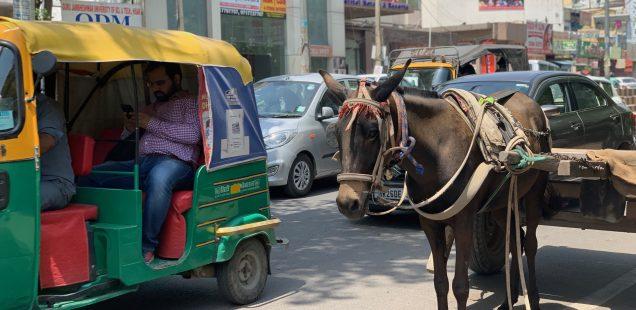 Mission Delhi - Unnamed Mule, Gurgaon