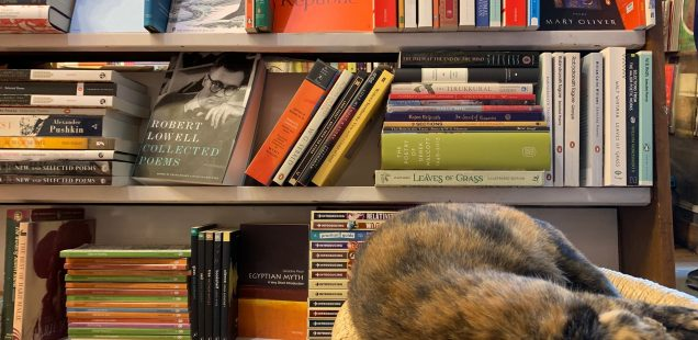 City Hangout - Best English Language Poetry Shelf, The Book Shop, Jor Bagh Market