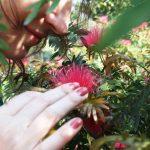 City Season - Raluca's Spring, Green Park