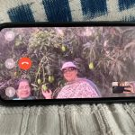 City Life - Leela Kanuga's Mango Tree, Mayfair Gardens