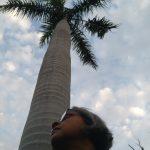 City Series – Debjani Sengupta in Delhi, We the Isolationists (235th Corona Diary)