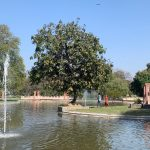 City Hangout - Unnamed Lake, Sunder Nursery