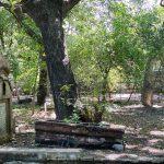 City Hangout - Shidipura Graveyard, Near Filmistan Cinema