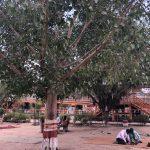 City Faith - Sheetla Mata Mandir, Gurgaon