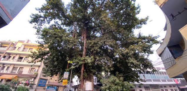 City Walk - The Circles of Shakti Nagar, North Delhi