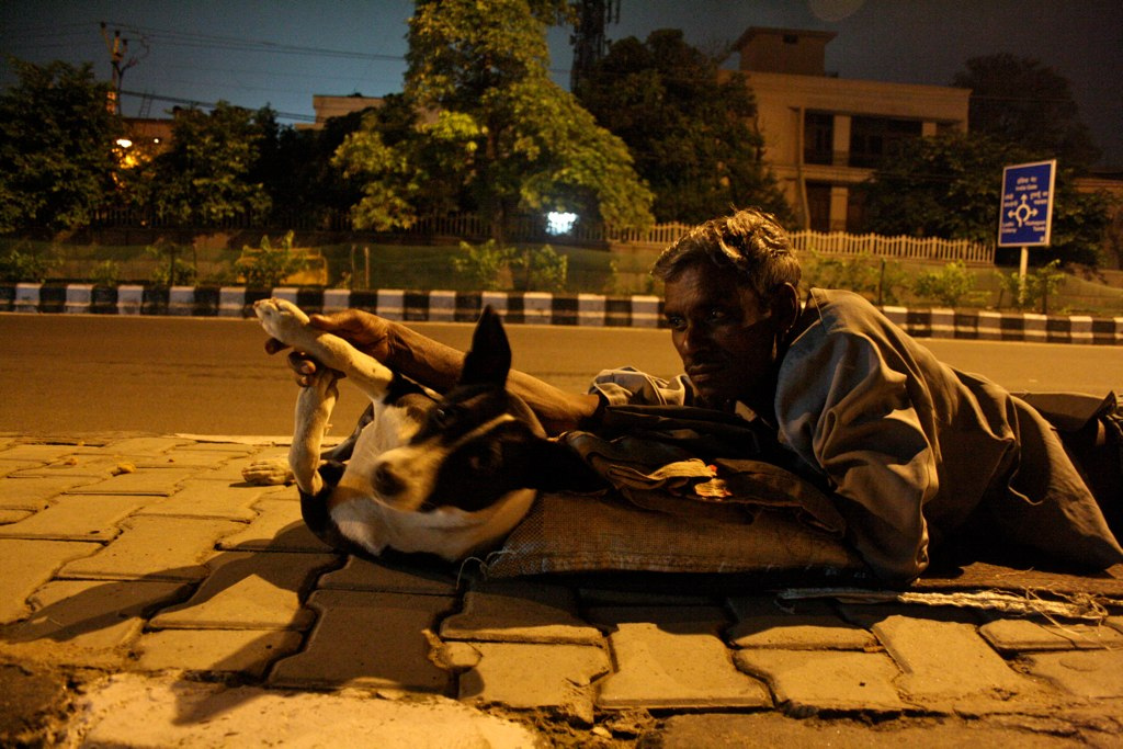 City Moment – The Man With the Dog, Mathura Road