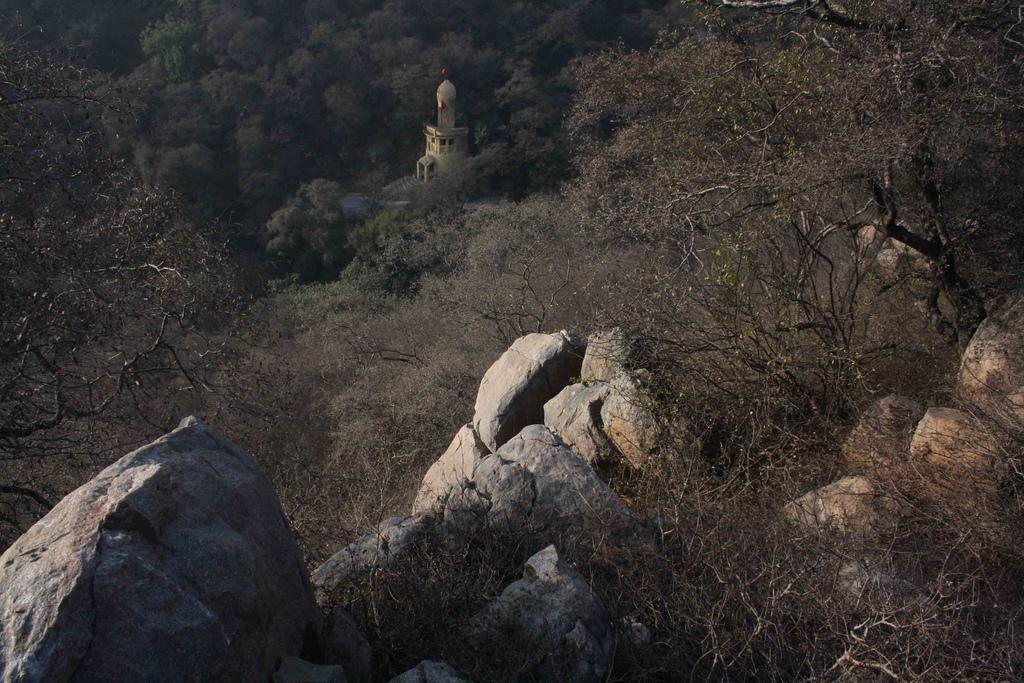 City Secret – Mangarbani, near Chattarpur