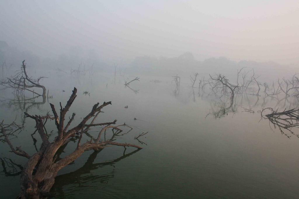 Photo Essay – Hauz Khas Lake, Near Green Park