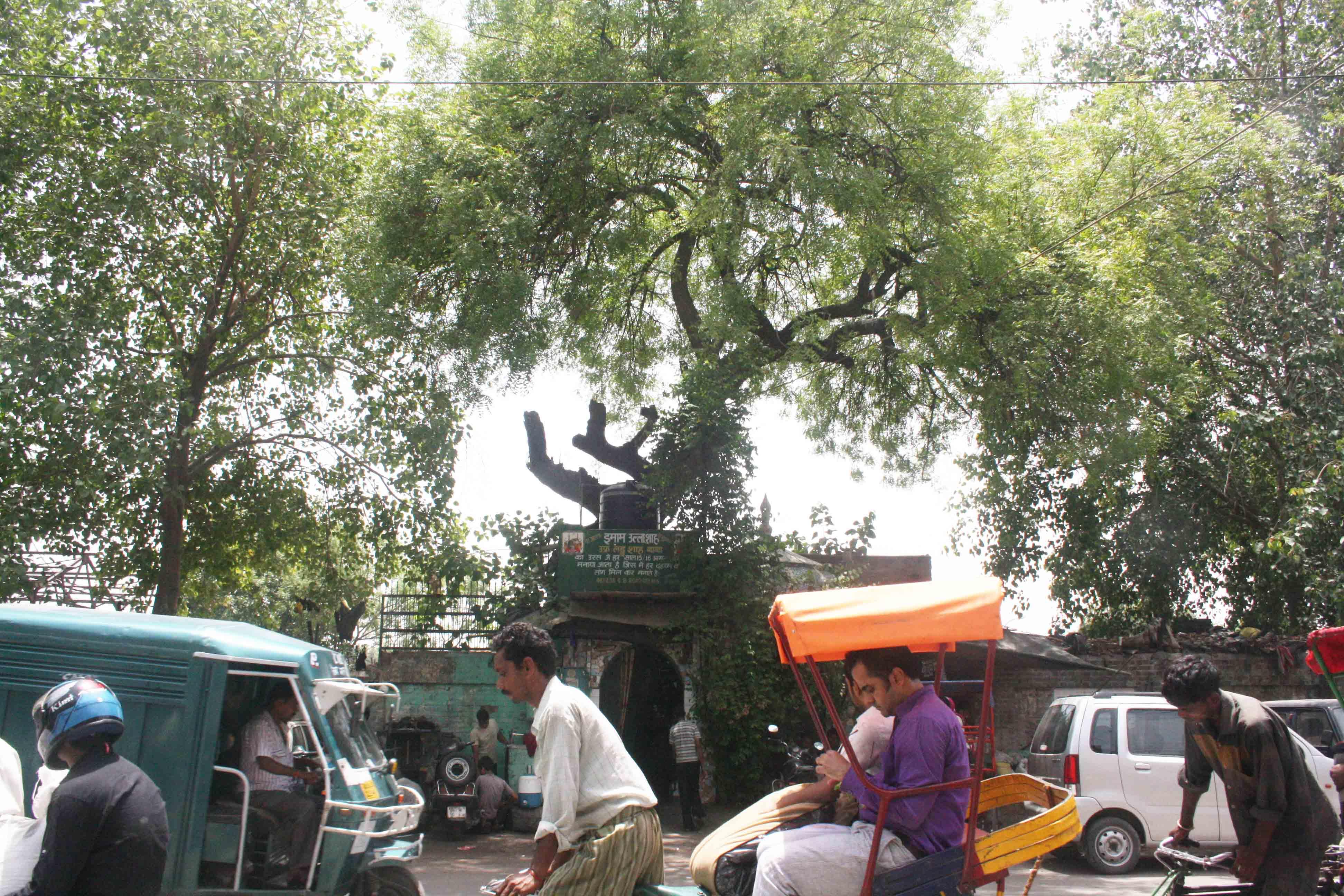 City Faith – Laddu Shah's Dargah, GB Road