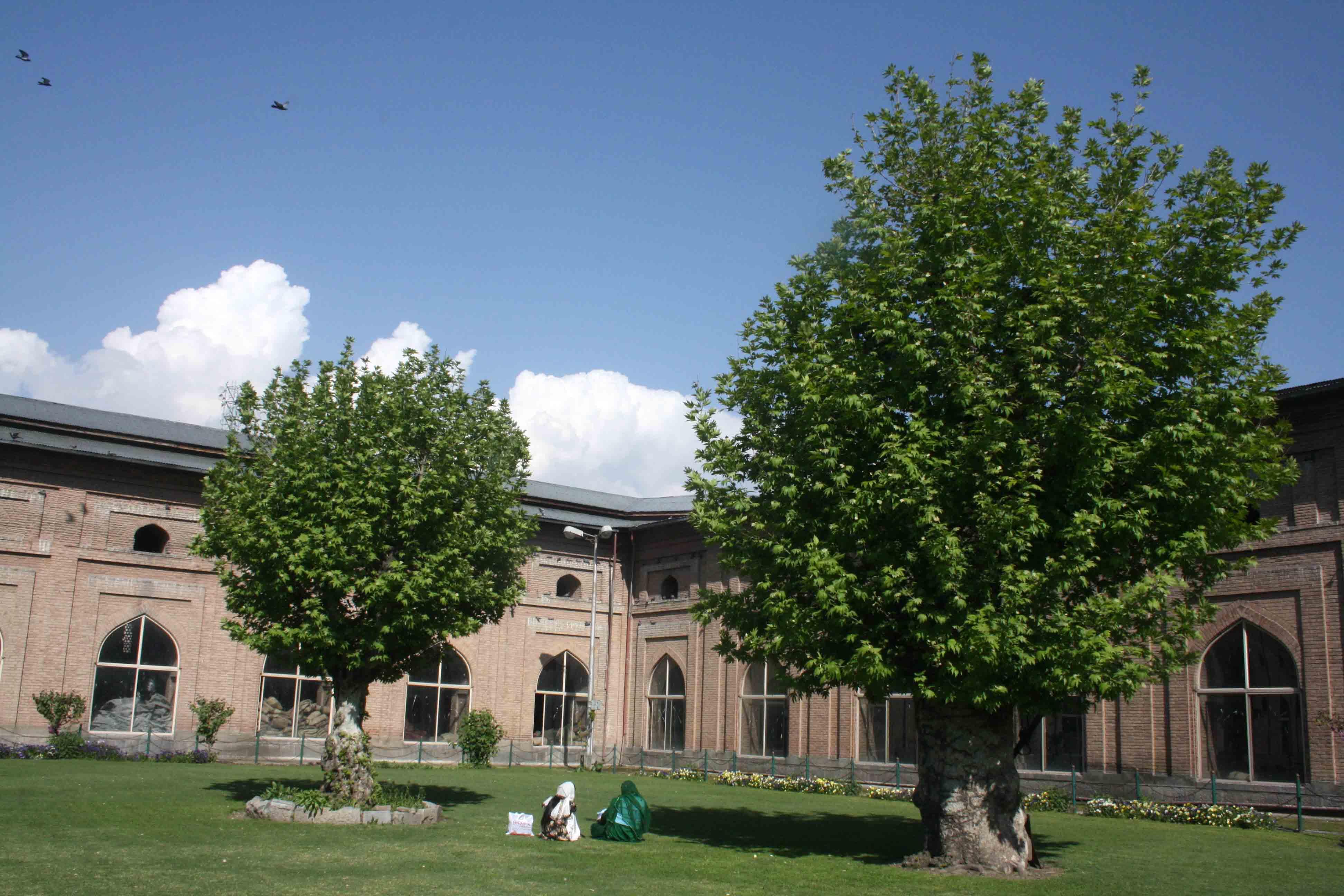 Kashmir Diary - Jamia Masjid, Srinagar