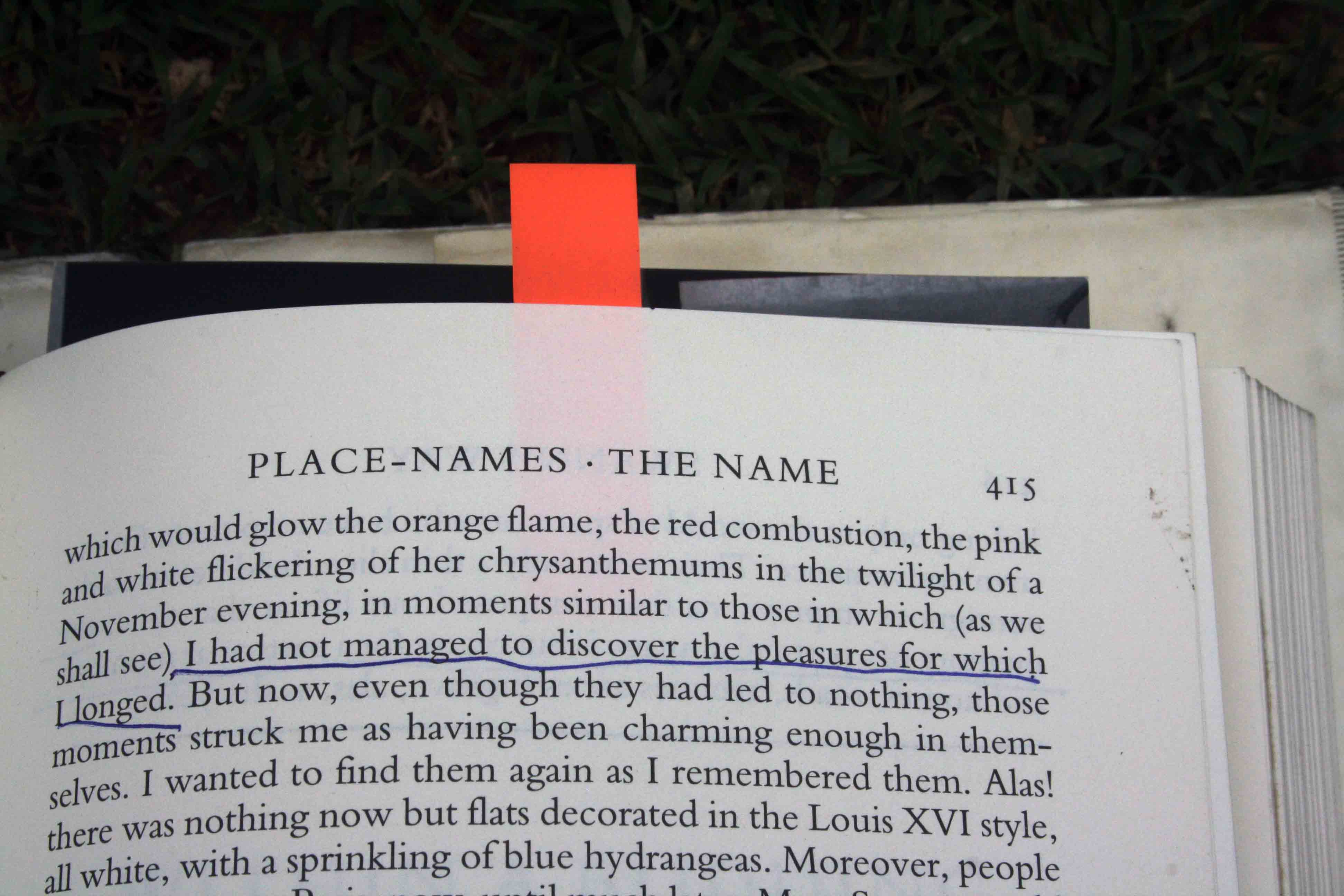 City Reading – The Delhi Proustians XXIV, Muhammad Shah Sayyid's Mausoleum