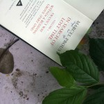City Reading – The Delhi Proustians XXVII, ITO Graveyard