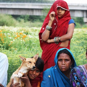 City Life - Farmer's World, Yamuna Bank