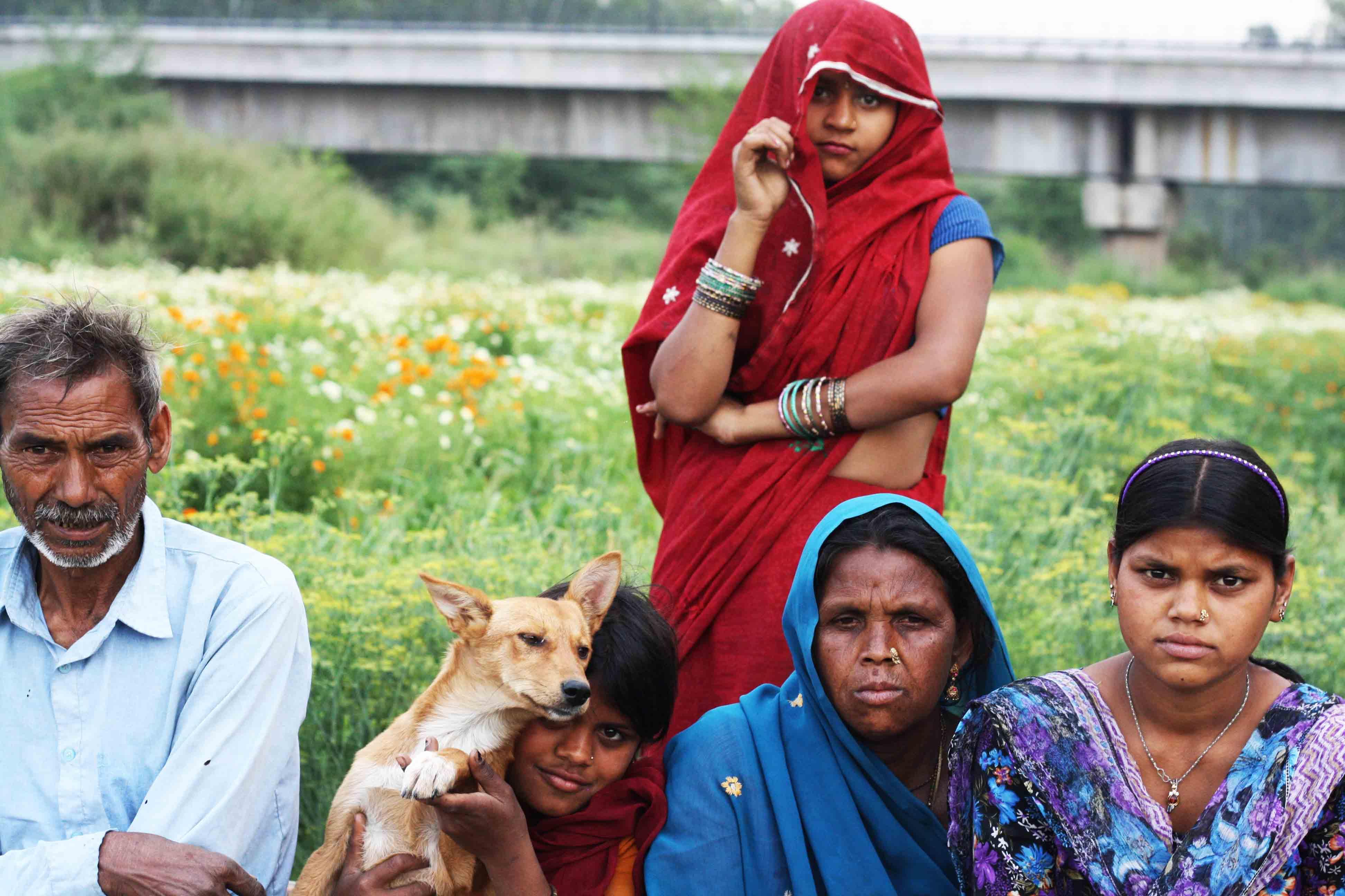 City Life - Farmer's World, Yamuna Bank