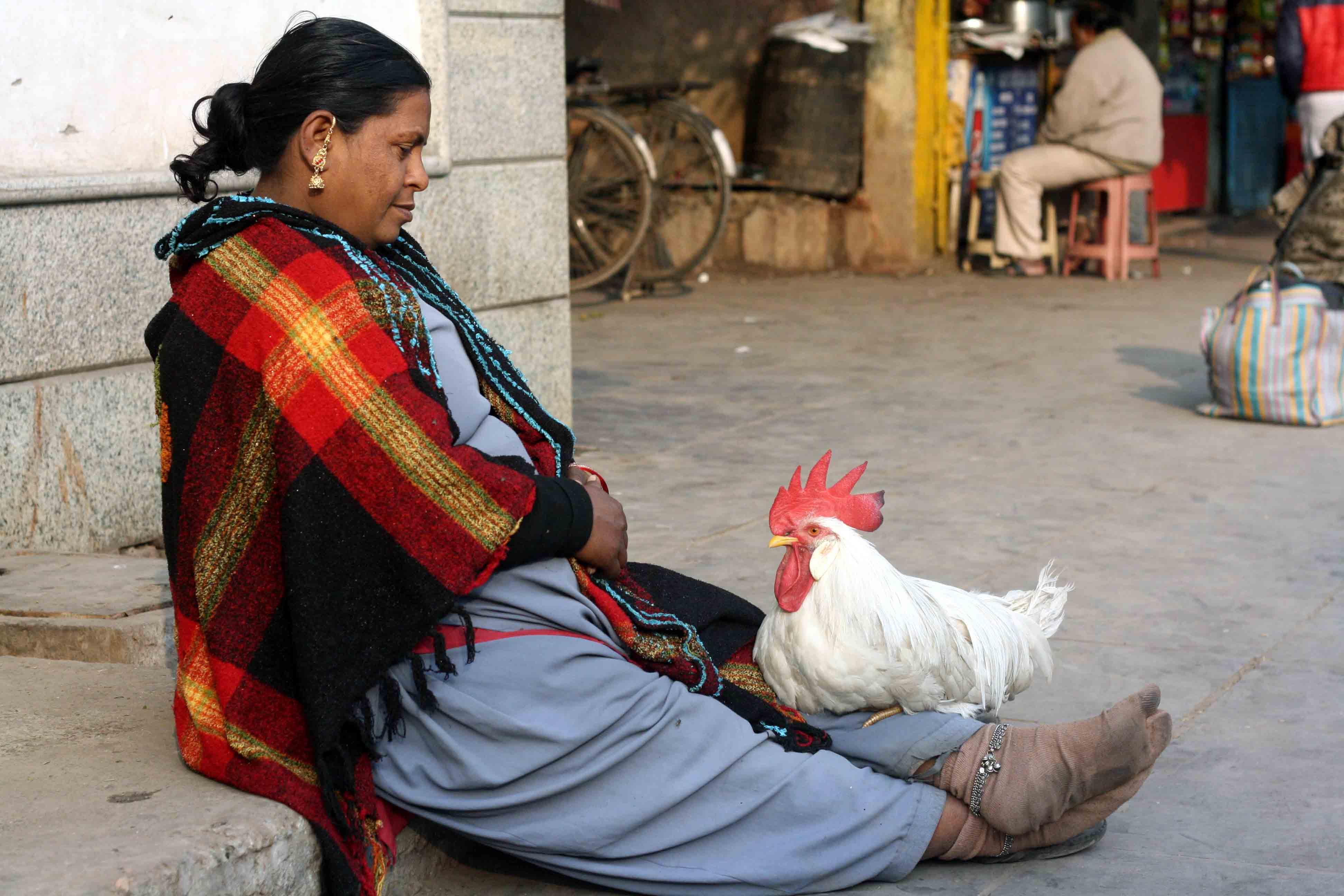 Atget's Corner – 646-650, Delhi Photos