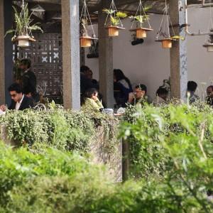 City Hangout - Triveni Tea Terrace, Mandi House