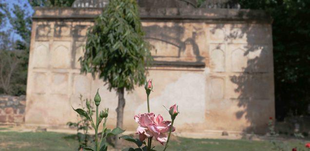 City Hangout - Rose Garden of England, Lodhi Gardens