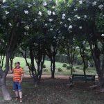 City Hangout - The World's Best Garden Bench, Nehru Park