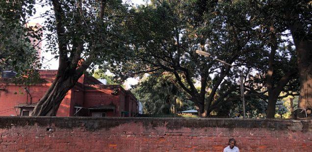 City Walk - Atul Grove Road, Central Delhi