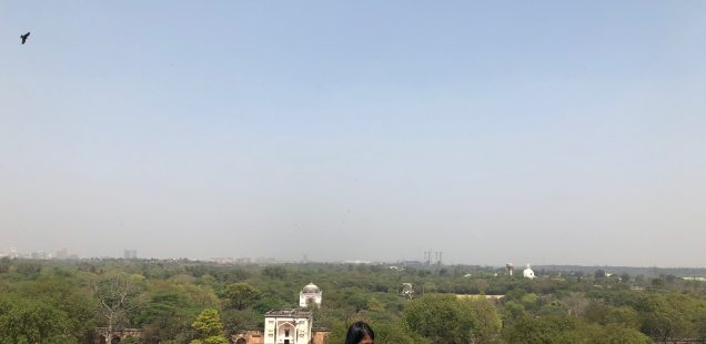 City Monument - The Ascent of Humayun's Tomb, Central Delhi