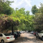 City Walk - Defence Colony Bylanes, South Delhi