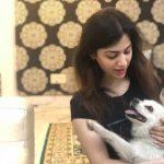 Mission Delhi - Fatima Khan, Ghaffar Manzil