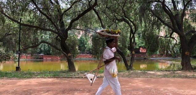 City Walk - A Secret Track , India Gate Grounds