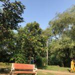 City Hangout - The Heart-Break Destination, Buddha Gardens