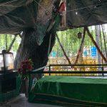 City Faith - Hazrat Qutub Shah Chishti's Sufi Shrine, Outside the Election Commission of India Headquarters