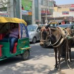 Mission Delhi - Unnamed Mule, Gurgaon