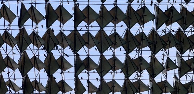 City Landmark - Stein's Architecture, India Habitat Centre