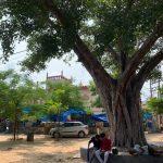 City Landmark - Peepal's People, Outside Jama Masjid, Gurgaon