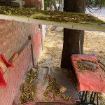 City Hangout - Ghost Street Stalls, South Delhi