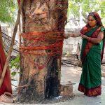 City Faith - Tree God, Hanuman Temple